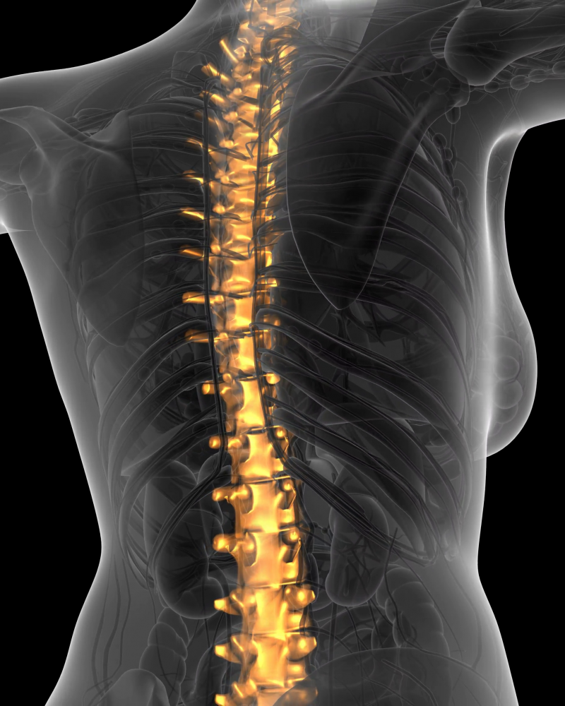 spinal biologics; frontline services